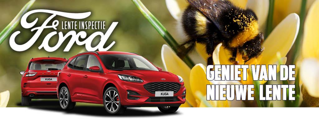 Ford Lente Inspectie € 29!